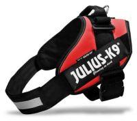 La famosa Julius K9